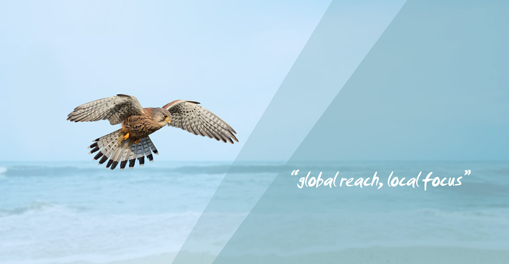Kestrel Liner Agencies Spreads Its Wings